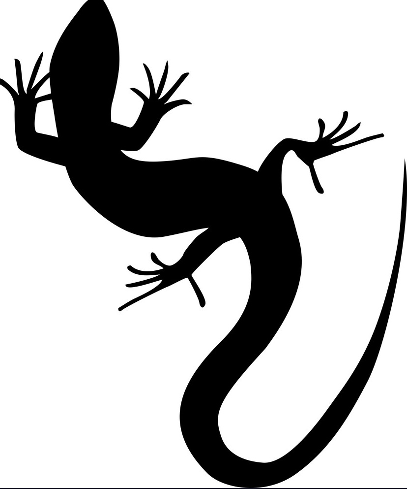 beautiful-monochrome-lizard-lizard-silhouette-vector-5631222